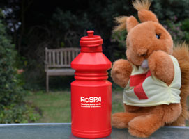 Even Tufty, our retired road safety squirrel, is getting in on the action!